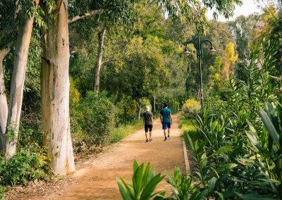 run-park